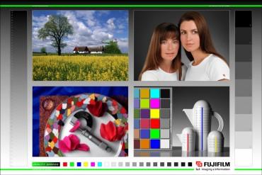kleuren - Foto Willemz